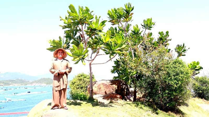 Đại đức từng là Bộ đội Cụ Hồ trồng 100 cây bàng vuông ở chùa  - ảnh 3