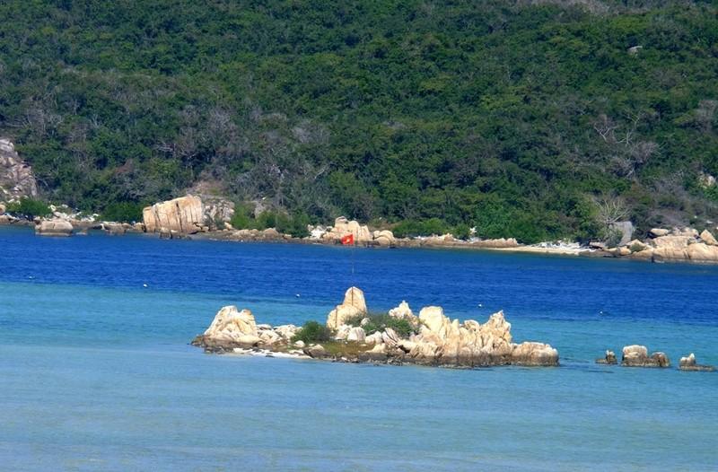 Đại đức từng là Bộ đội Cụ Hồ trồng 100 cây bàng vuông ở chùa  - ảnh 8
