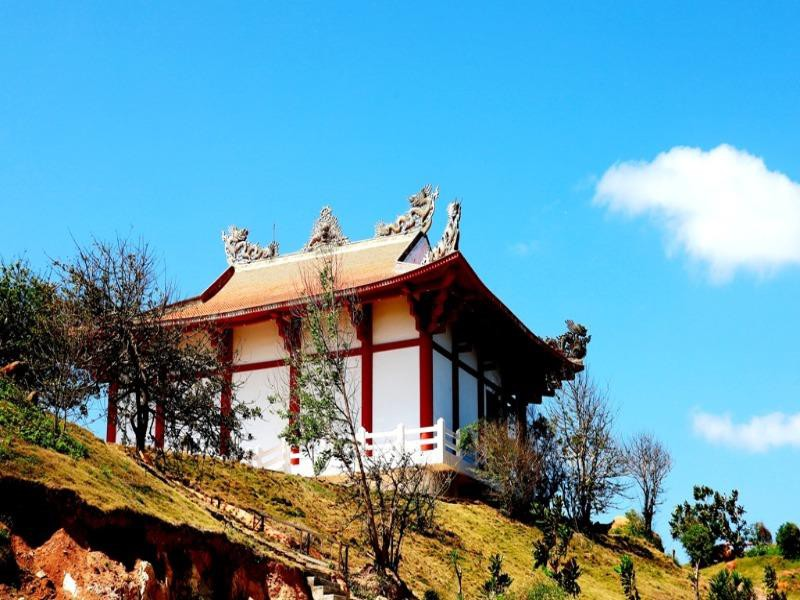 Đại đức từng là Bộ đội Cụ Hồ trồng 100 cây bàng vuông ở chùa  - ảnh 1