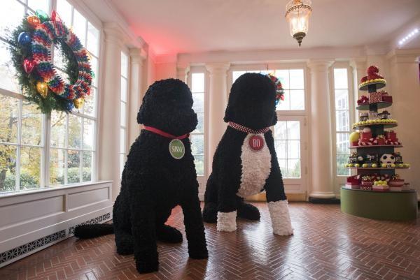 Nhà Obama chuẩn bị đón mùa Giáng sinh cuối ở Nhà Trắng - ảnh 8