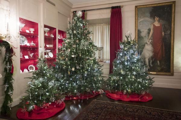 Nhà Obama chuẩn bị đón mùa Giáng sinh cuối ở Nhà Trắng - ảnh 9