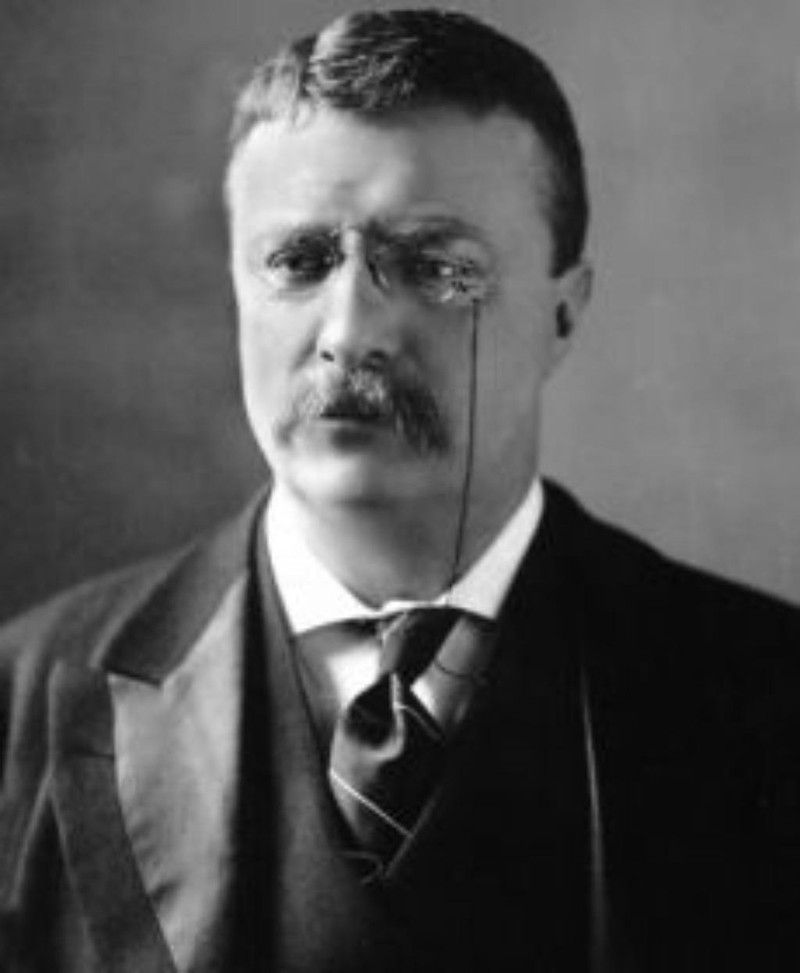 Tổng thống Theodore Roosevelt