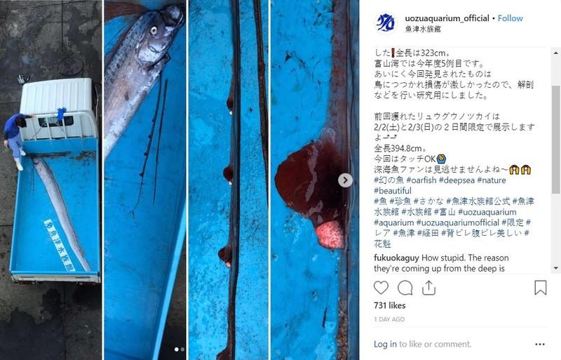 Dù các nhà khoa học trấn an nhưng người dân Nhật vẫn bày tỏ trên mạng xã hội nỗi lo sắp có thảm họa. Ảnh: INSTAGRAM