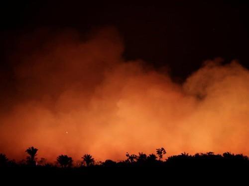Một dải rừng Amazon gần TP Humaita, bang Amazonas (Brazil) cháy đỏ ngày 17-8. Ảnh: REUTERS