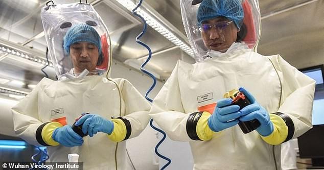 Các nhà khoa học làm việc tại phòng thí nghiệm cao cấp nghiên cứu virus ở Vũ Hán. Ảnh: DAILY MAIL