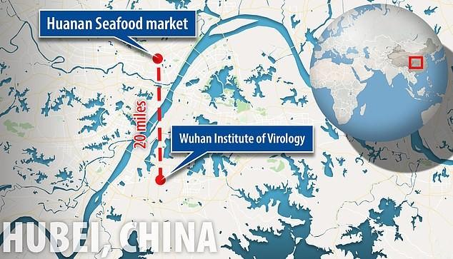 Phòng thí nghiệm chỉ cách khu chợ nơi phát hiện dịch ở Vũ Hán hơn 30km. Ảnh: DAILY MAIL