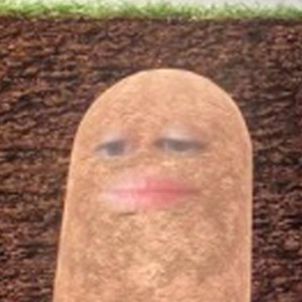 Cười ngất sếp biến thành khoai tây khi họp online mùa COVID-19 - ảnh 1