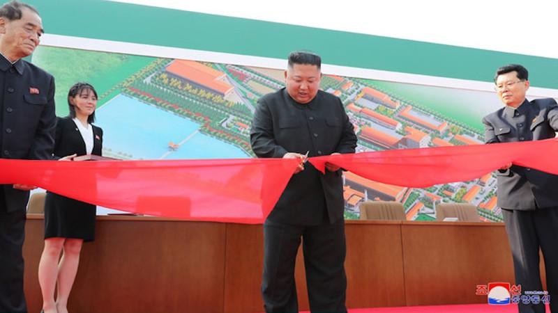 Ông Trump nói gì chuyện ông Kim 'tái xuất' - ảnh 2