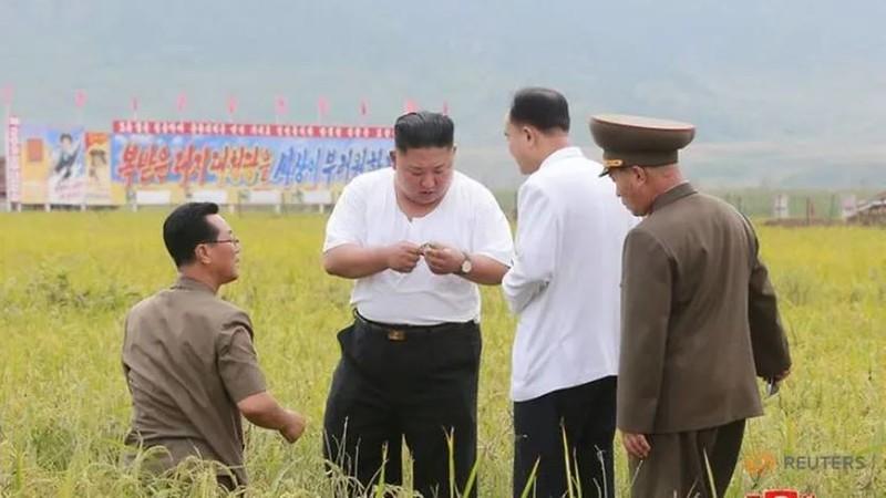 Triều Tiên tung bộ ảnh ông Kim khỏe mạnh đi thăm vùng lũ - ảnh 2