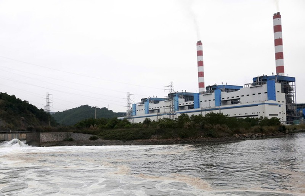 Nhiều nhà máy nhiệt điện lo đóng cửa vì thiếu than - ảnh 1