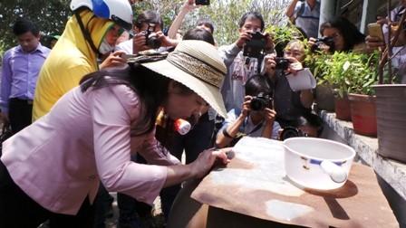 Bệnh nhân nhiễm Zika người Hàn Quốc từng cư ngụ tại Việt Nam - ảnh 1