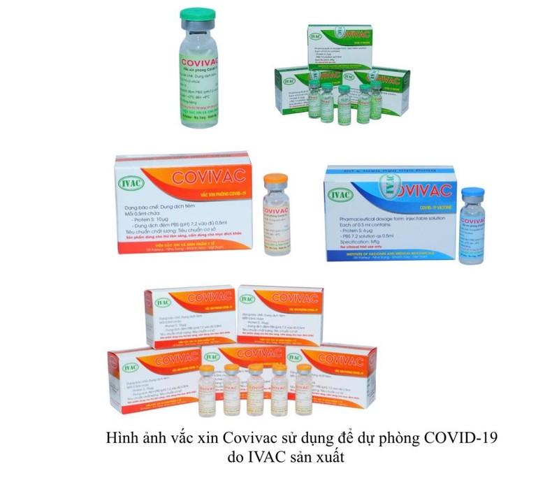 Thử nghiệm vaccine COVID-19 thứ 2 do Việt Nam sản xuất - ảnh 2