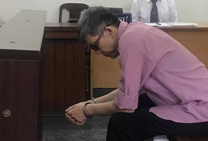 Mẹ hầu tòa vì 'chạy án' cho con - ảnh 2