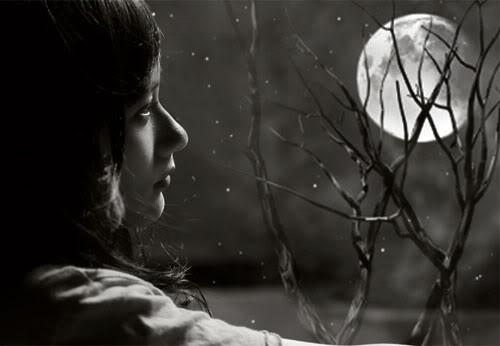 Tôi đã chạm vào mùi hương mê hoặc của trăng - ảnh 1