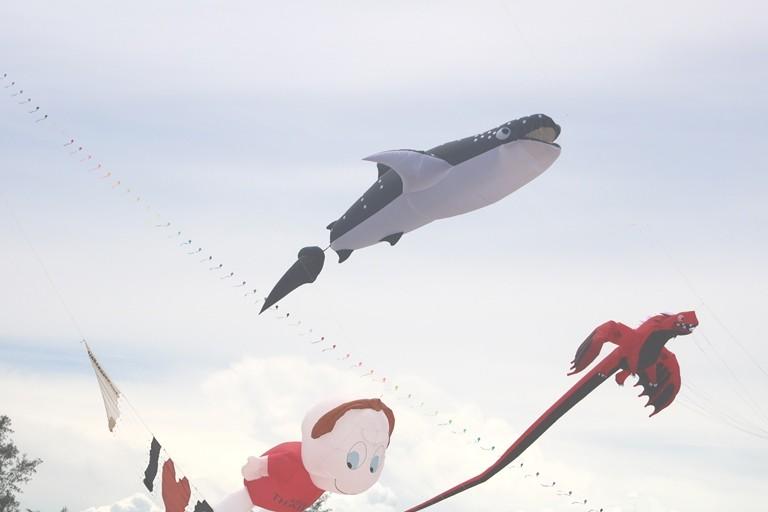 Ảnh: Độc đáo 'động vật biển' bay lên trời - ảnh 1