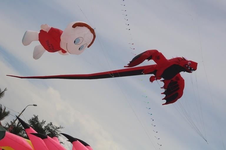 Ảnh: Độc đáo 'động vật biển' bay lên trời - ảnh 5