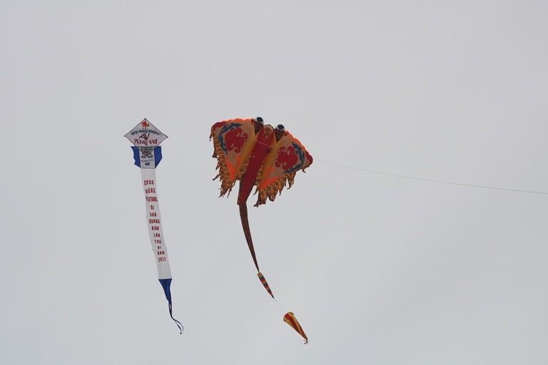 Ảnh: Độc đáo 'động vật biển' bay lên trời - ảnh 2