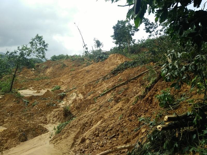 Quảng Nam: Thiệt hại khoảng 1.500 tỉ đồng do bão lũ - ảnh 1
