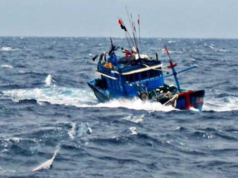 1 tàu cá bị đâm chìm trên biển - ảnh 1