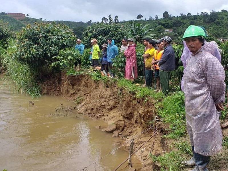 Lâm Đồng: Mưa lớn làm đổ cây, quốc lộ bị chia cắt - ảnh 2