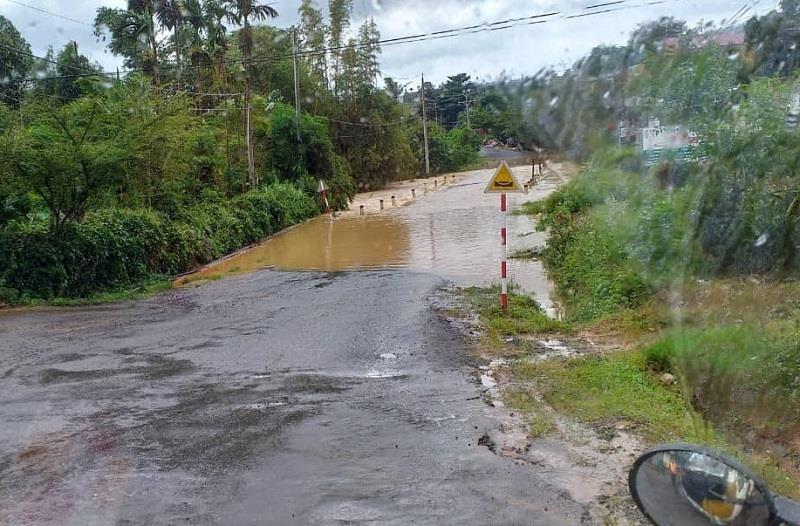 Lâm Đồng: Mưa lớn làm đổ cây, quốc lộ bị chia cắt - ảnh 1