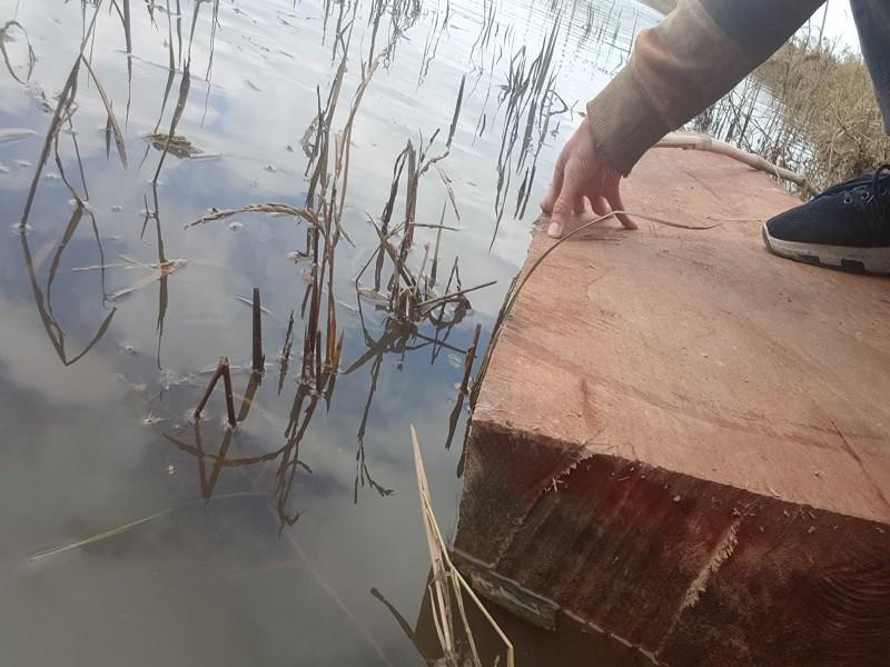 Sở Nông nghiệp nêu trách nhiệm vụ phá rừng đặc dụng Nam Kar - ảnh 4