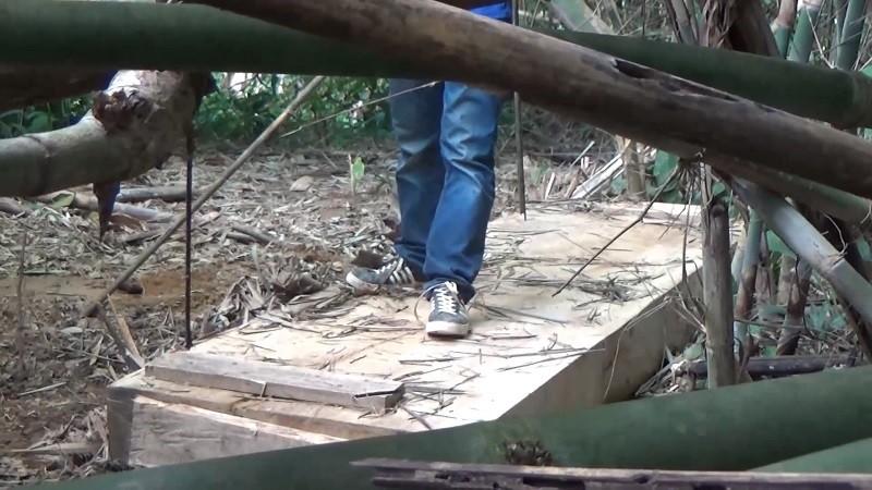 Sở Nông nghiệp Đắk Lắk nói về vụ phá rừng đặc dụng Nam Kar - ảnh 3