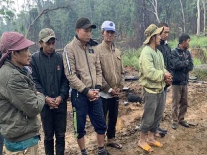 10 người Khánh Hòa sang Đắk Lắk phá rừng bị khởi tố - ảnh 1