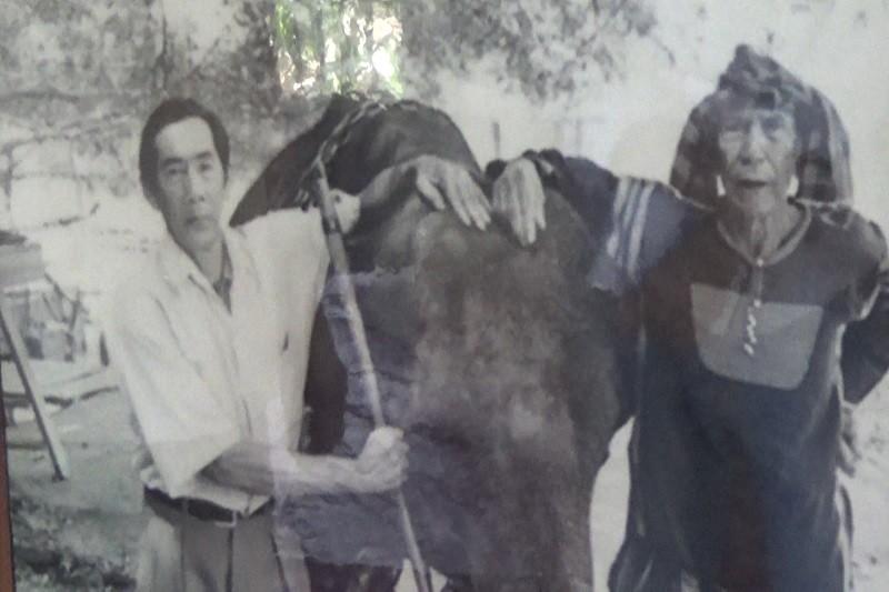 Ngày tết con trai Ama Kông kể chuyện săn voi trắng  - ảnh 6