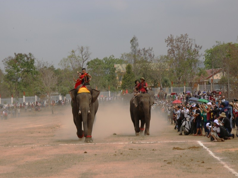 Ngày tết con trai Ama Kông kể chuyện săn voi trắng  - ảnh 8