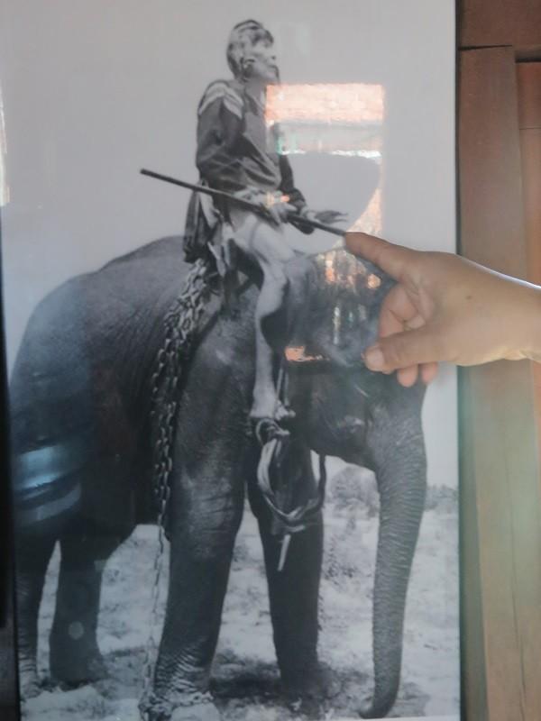 Ngày tết con trai Ama Kông kể chuyện săn voi trắng  - ảnh 3