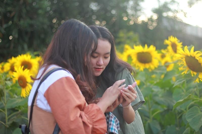 Giới trẻ rầm rộ check in vườn hoa mặt trời giữa lòng phố núi - ảnh 6