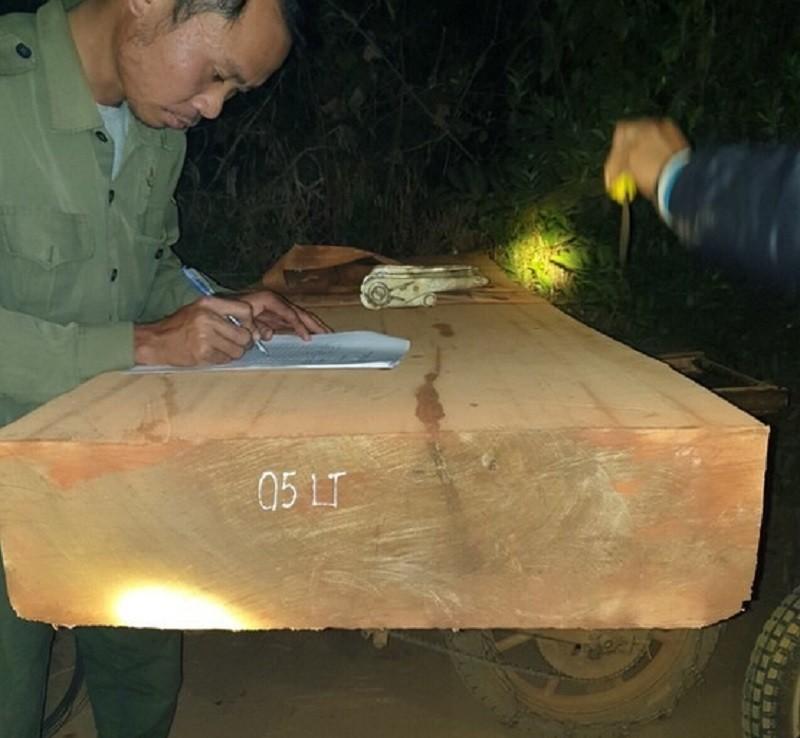 Bị mật phục, 13 người chở gỗ bỏ xe chạy trốn - ảnh 1