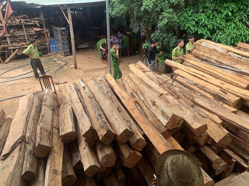 Bắt chủ xưởng mua bán gỗ trái phép ở Gia Lai - ảnh 1