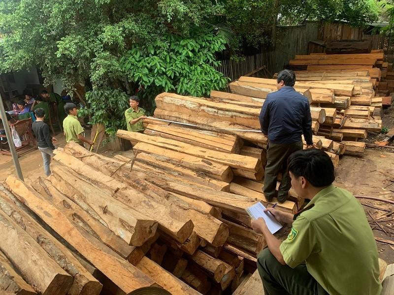 Bắt chủ xưởng mua bán gỗ trái phép ở Gia Lai - ảnh 2