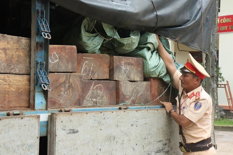 Bắt xe chở gỗ từ Đắk Lắk vào TP.HCM tiêu thụ - ảnh 1