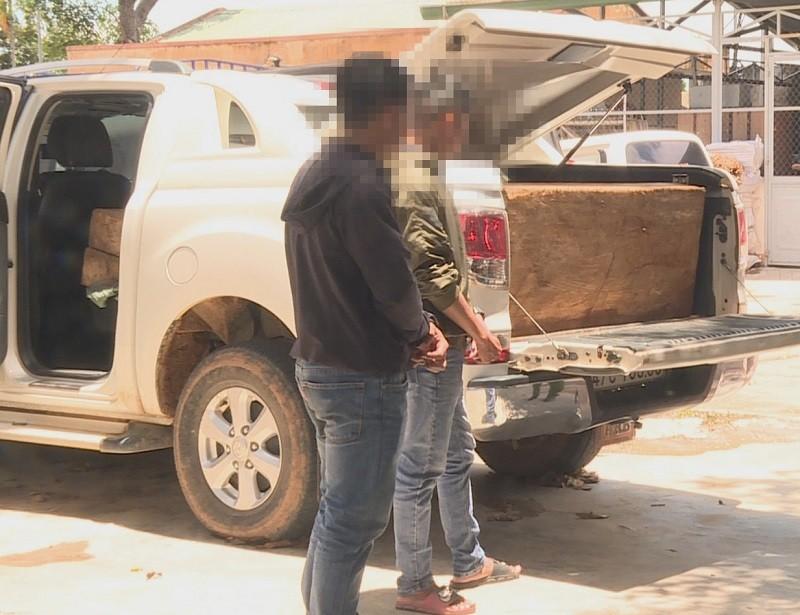 2 giáo viên chở gỗ pơ mu trên xe bán tải - ảnh 1