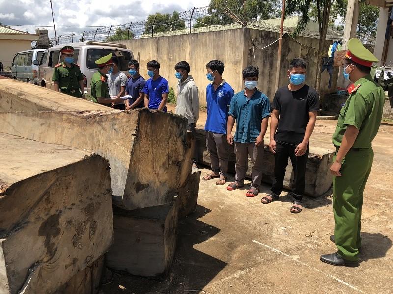 11 người phá rừng tại Đắk Nông khai do gia đình khó khăn - ảnh 3