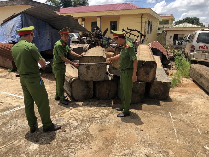 11 người phá rừng tại Đắk Nông khai do gia đình khó khăn - ảnh 2