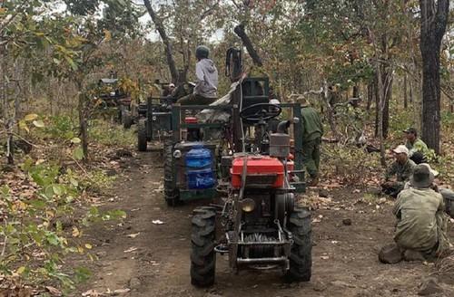 Đề nghị xử lý nghiêm vụ điều cả đoàn xe công nông vào rừng - ảnh 1