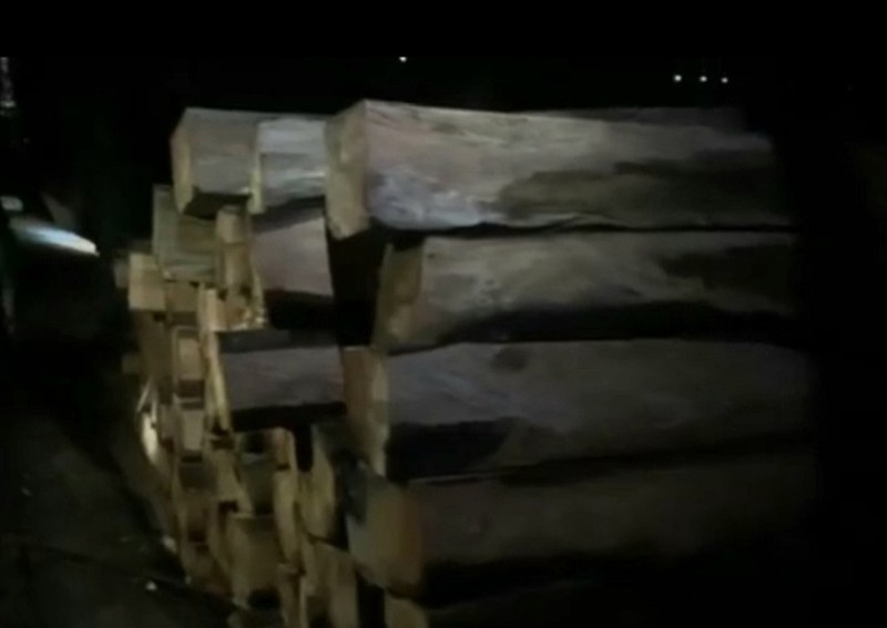 Kiểm lâm thông tin các 'bãi gỗ vô chủ' ở hồ Sê San - ảnh 1