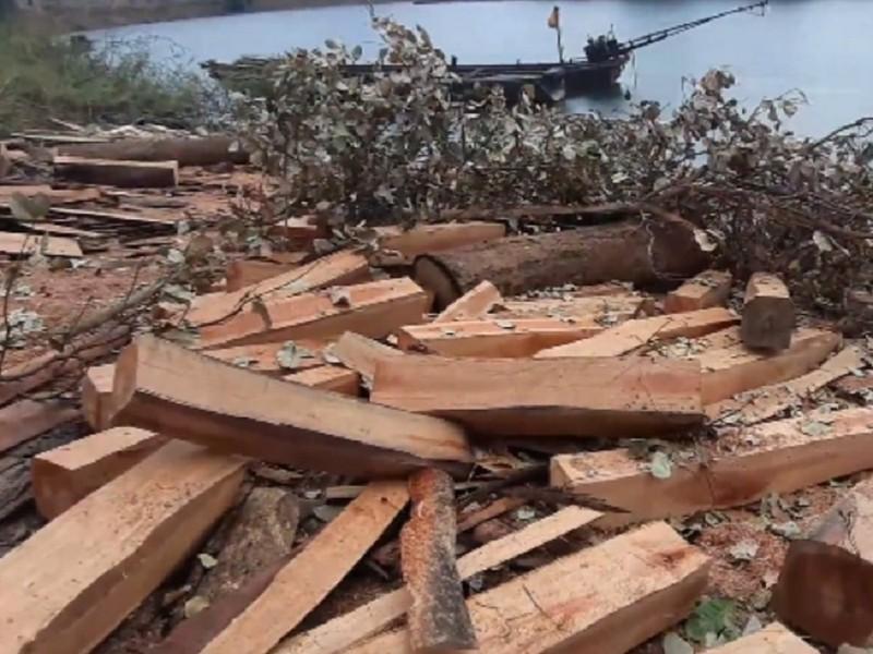 Kiểm lâm thông tin các 'bãi gỗ vô chủ' ở hồ Sê San - ảnh 3
