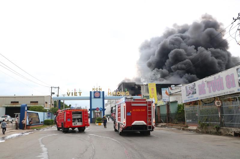 TP.HCM chi viện cho Bình Dương để dập đám cháy lớn - ảnh 8