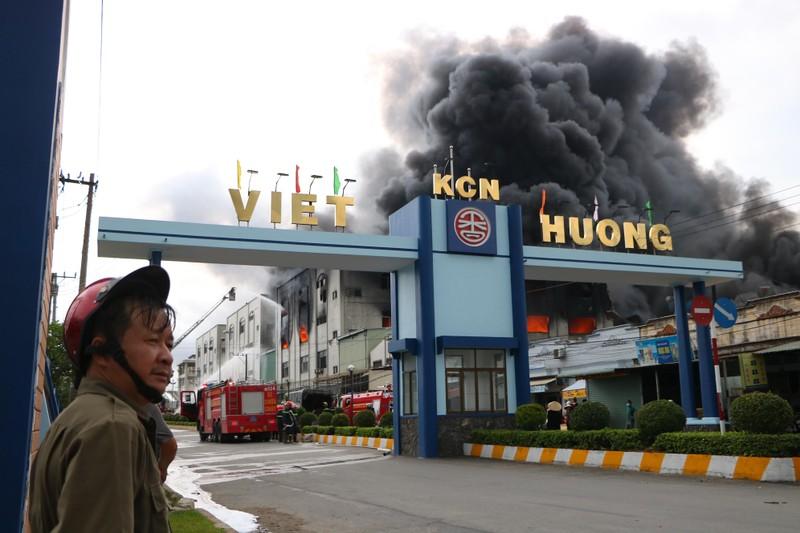 TP.HCM chi viện cho Bình Dương để dập đám cháy lớn - ảnh 1