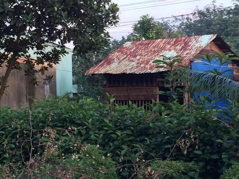 Sản phụ bị tài xế bỏ rơi ở Bình Phước đã xuất viện - ảnh 1