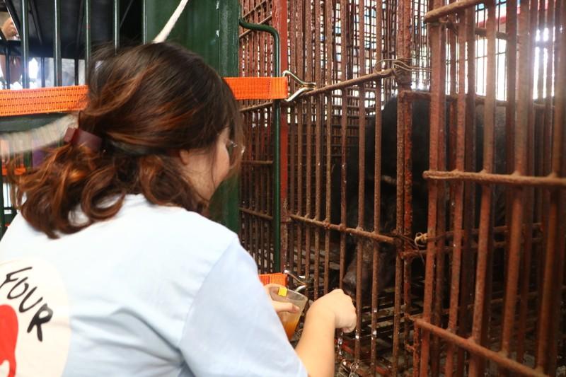 Cứu hộ bảy cá thể gấu bị nuôi nhốt ở Bình Dương, Đồng Nai - ảnh 2