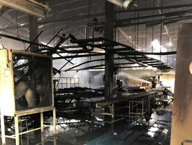 Công ty gỗ ở Bình Dương bị cháy trong ngày làm việc cuối năm - ảnh 2