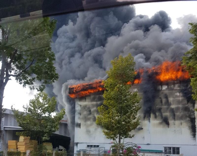 Bình Dương: Một công ty đang bốc cháy dữ dội - ảnh 4