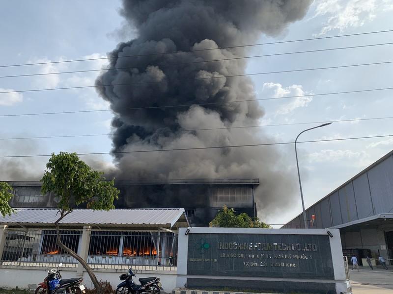 Bình Dương: Một công ty đang bốc cháy dữ dội - ảnh 3