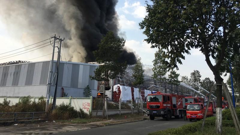 Bình Dương: Một công ty đang bốc cháy dữ dội - ảnh 6